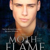 the-moth-and-the-flame-ebook